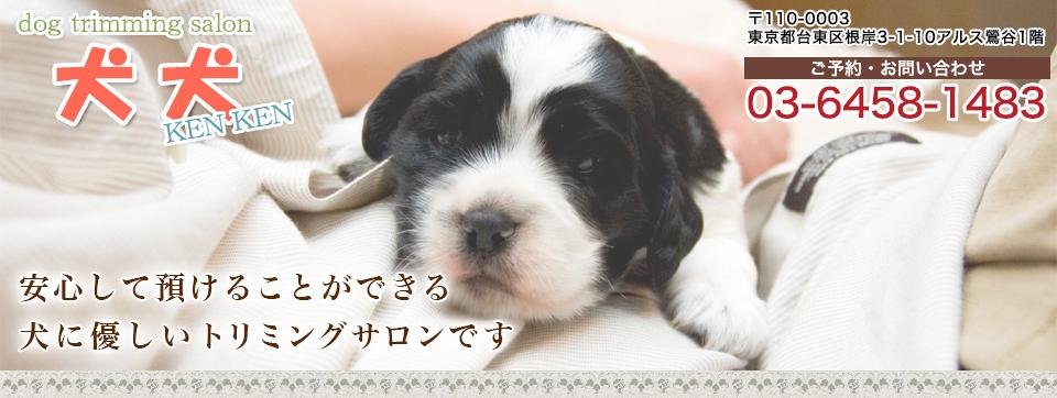 犬のトリミングサロン犬犬(KENKEN)